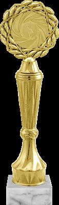 Награда 2103-100