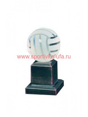 Награда G0011 волейбол
