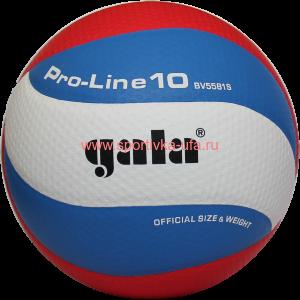 Мяч Gala Pro-Line 10 BV5581S р. 5