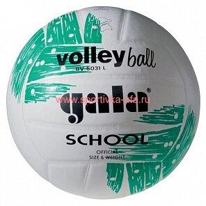 Мяч Gala School BV5031L р. 5