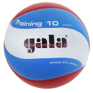 Мяч Gala Training 10 BV5561S р. 5